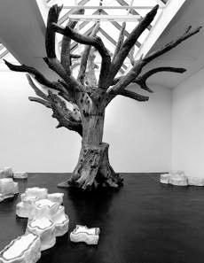 Ai Weiwei: 'Tree' og 'Rocks' på Louisiana