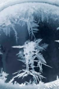 Carsten Nicolai: 'Snow Noise', 2011