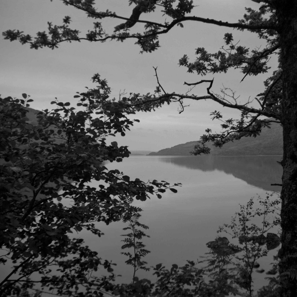 Astrid Kruse Jensen: 'The Lake', 2015