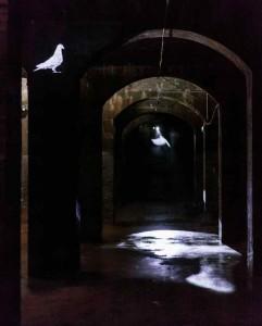 Installationshot med to typer due-projektion - den bagerste er på gardin af forstøvet vand. Foto: Anders Sune Berg