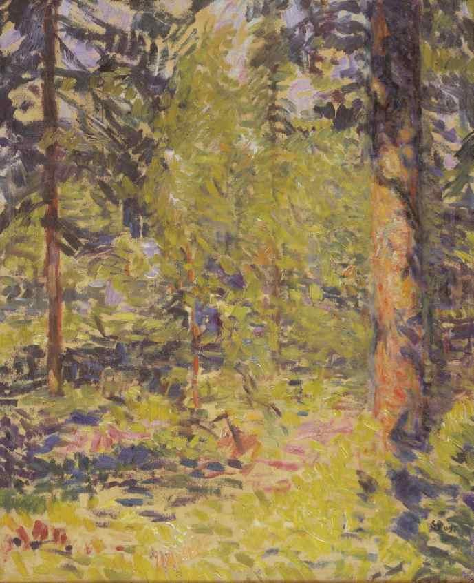 Sigurd Swane: 'Sol i granskov. Småland', 1909. Statens Museum for Kunst