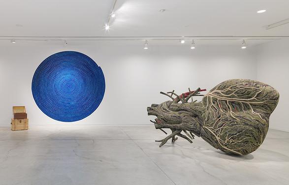Installationshot af Bharti Khers udstilling 'Matter' i Vancouver Art Gallery. Foto: Maegan Hill-Carroll, Vancouver Art Gallery
